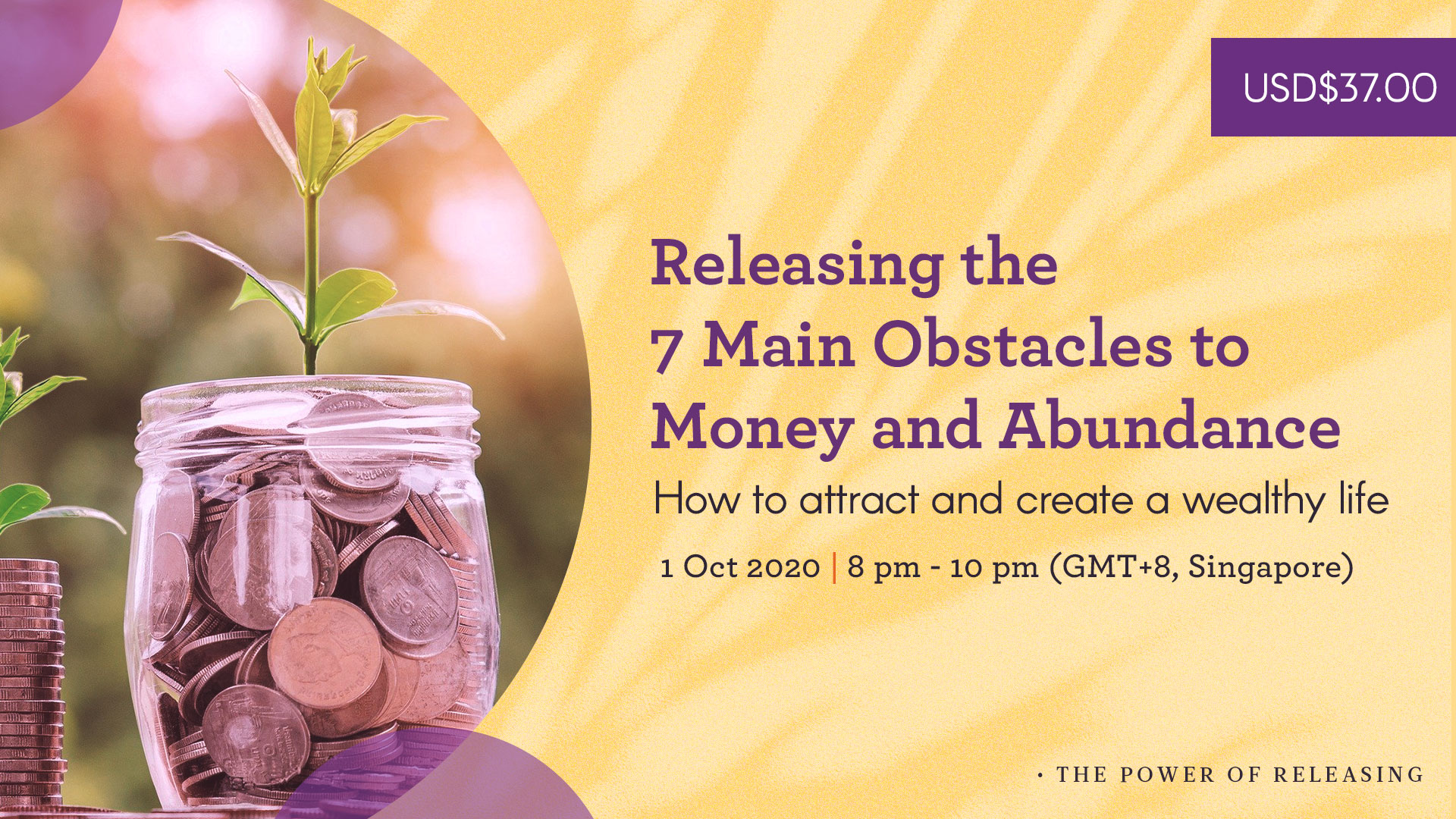 Releasing the 7 Main Obstacles to Money and Abundance - How to attract and create a wealthy life